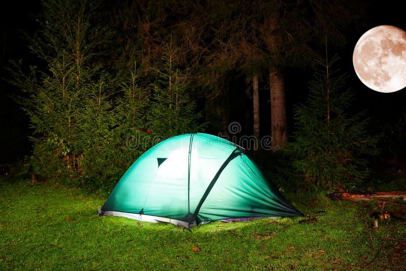 旅游帐篷在夜森林里 免版税库存照片