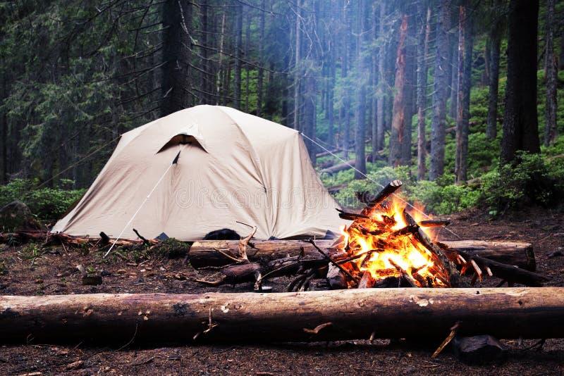 旅游帐篷在森林里在晚上 免版税库存照片