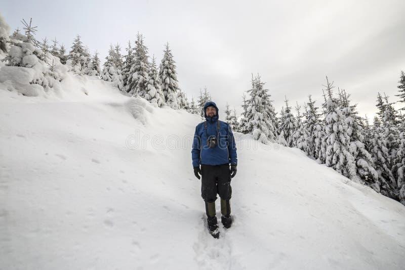 旅游徒步旅行者身分后面看法在陡峭的山坡的在拷贝云杉的树和清楚的天空空间背景  旅游业和 库存图片
