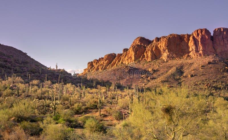 旅行亚利桑那风景沙漠风景旅游业照片,美国 图库摄影