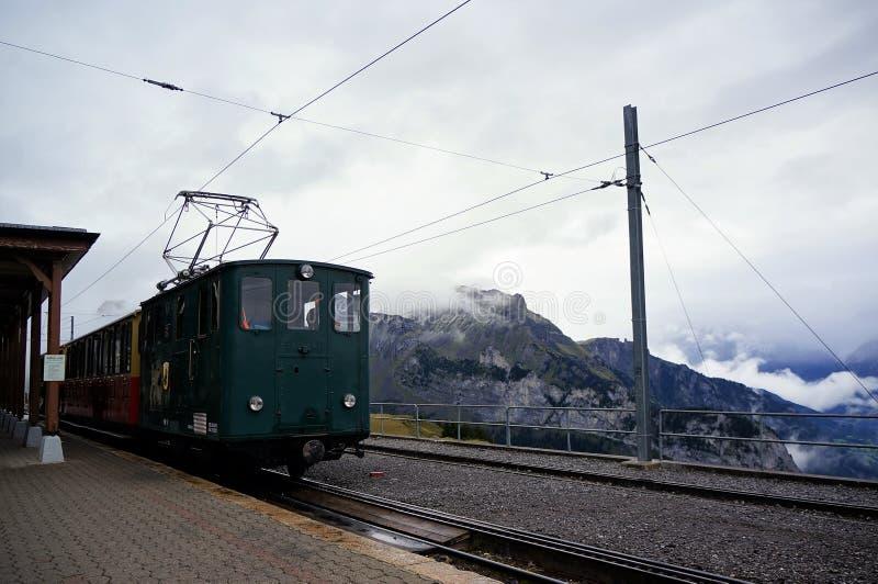 旅行从Wilderswil的减速火箭的火车到与薄雾和高山森林惊人的看法的Schynige普拉特作为背景 少女峰regi 图库摄影