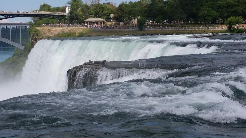 旅行向尼亚加拉 免版税库存照片