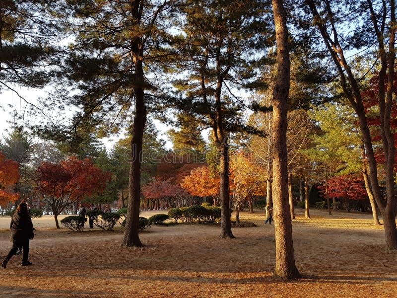 旅行向韩国 免版税库存照片