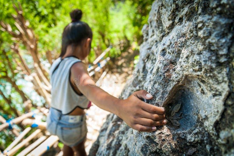 旅行在危险道路山的年轻女性妇女 图库摄影