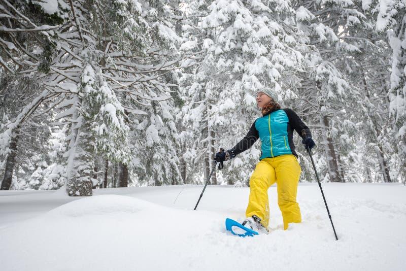 旅行家妇女在大杉木中的雪靴走 库存照片
