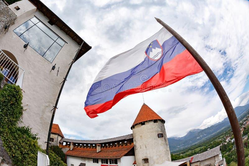 旅行斯洛文尼亚,欧洲 有海岛、城堡和阿尔卑斯山的流血的湖在背景 流血的湖一最惊人 库存照片