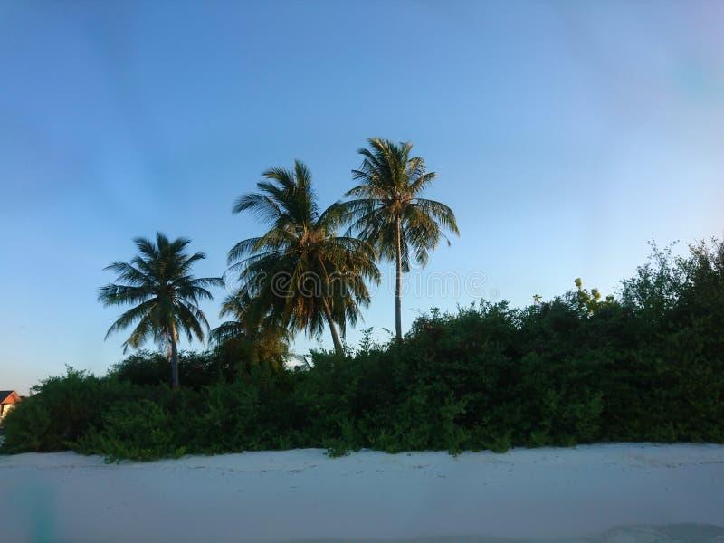 旅行,自然 库存图片