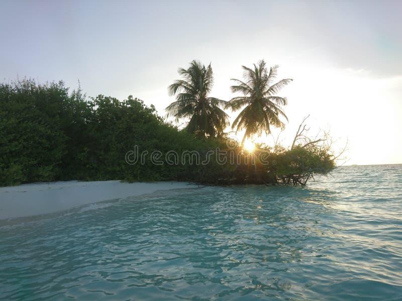 旅行,自然 免版税库存图片
