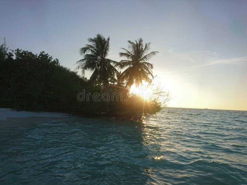 旅行,自然 免版税库存照片