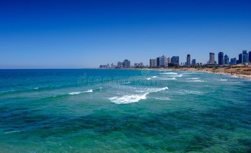 v海滩以色列:特拉唯夫海滩全景.假期,手段.t纯美女桖图片