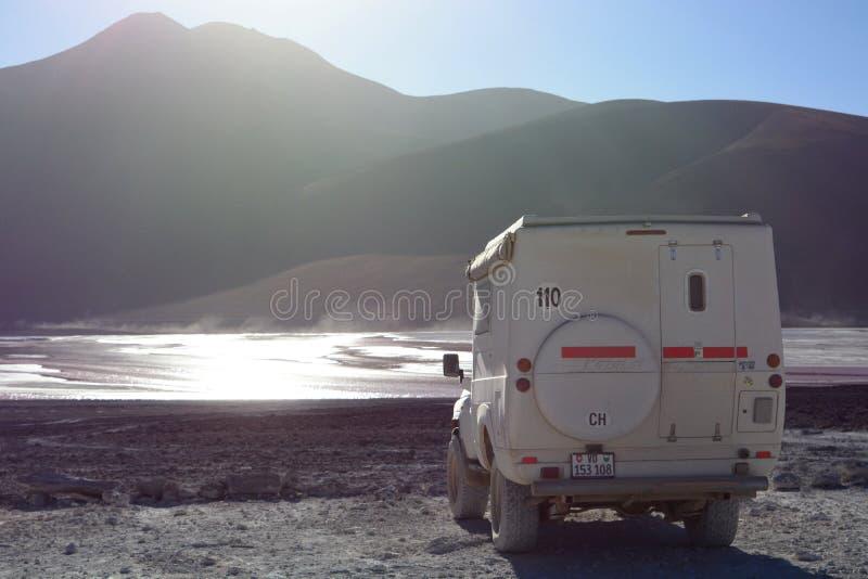 旅行 colorada拉古纳 安地斯山的avaroa eduardo动物区系国家储备 流星锤 库存照片