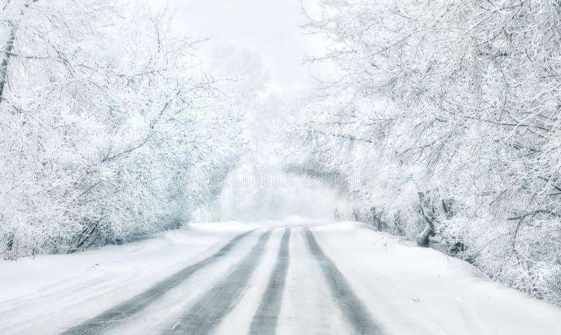 旅途通过西伯利亚 白色路 库存照片