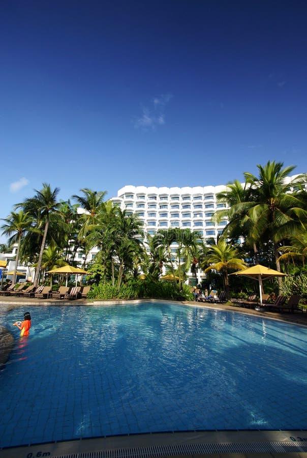 旅馆池热带手段的游泳 免版税库存图片