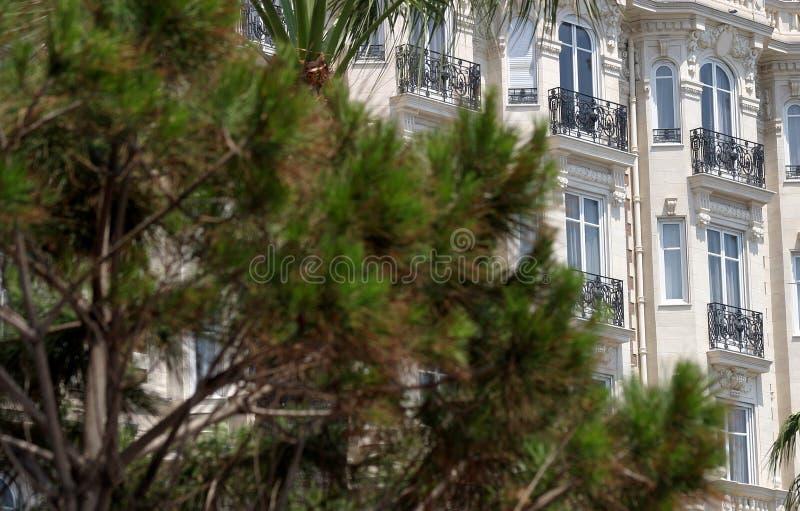旅馆窗口和树在戛纳 免版税库存照片