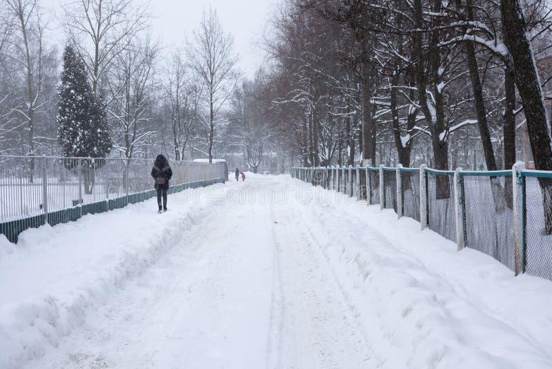 旋风埃玛在Brisov城市 免版税库存照片