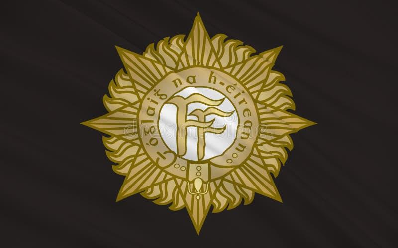 旗子爱尔兰军队 库存例证