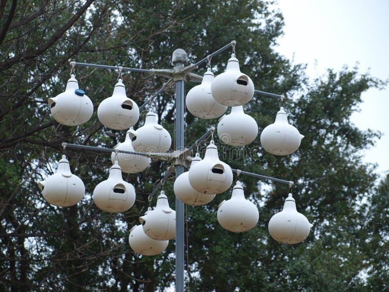 旗杆猪圈鸟议院在一个围场 免版税图库摄影