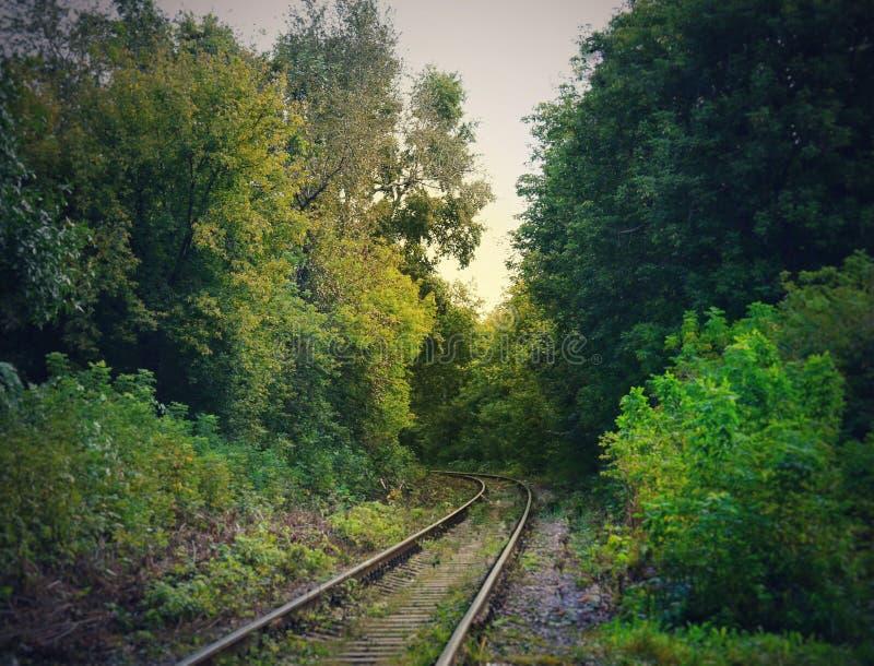 无处铁路 库存图片