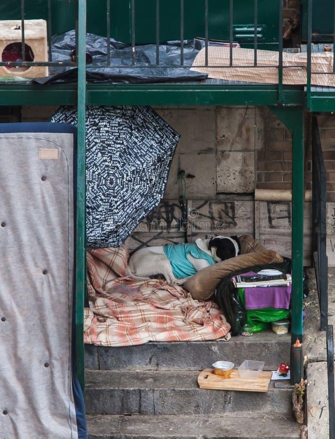 无家可归的家 免版税库存照片