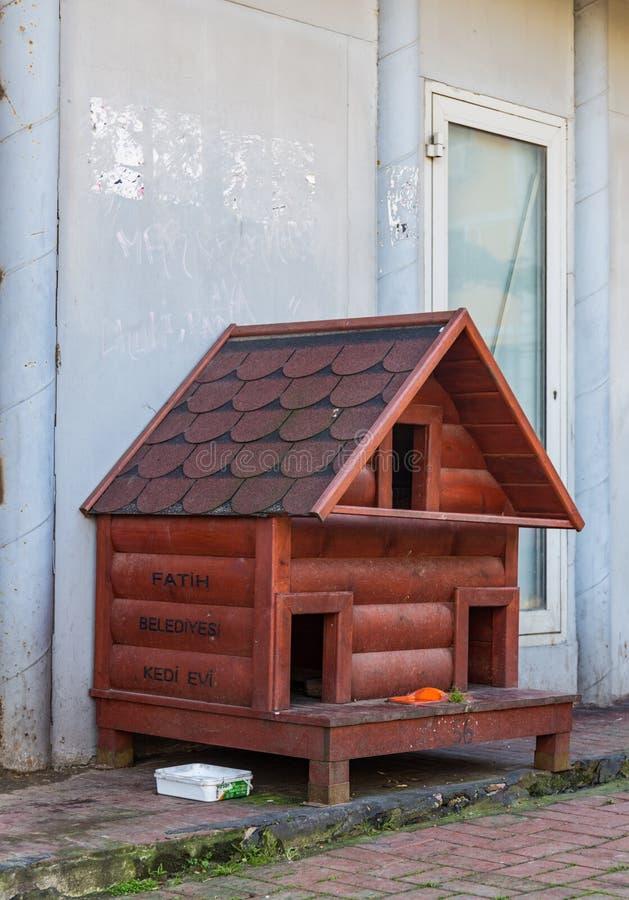 无家可归的猫的红色街道房子在伊斯坦布尔,土耳其 库存图片