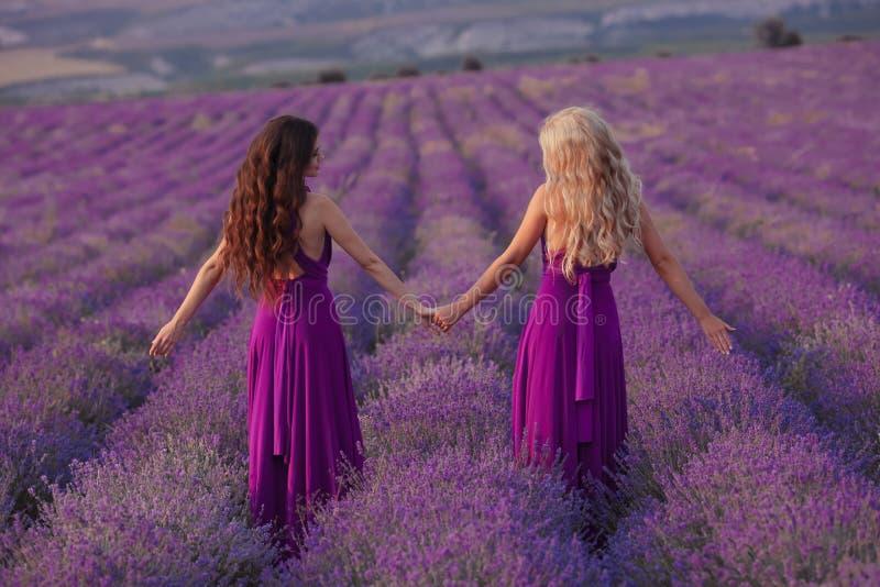 无忧无虑的两名妇女握享受在淡紫色领域的手日落 和谐 后面看法有吸引力白肤金发和深色与长 图库摄影