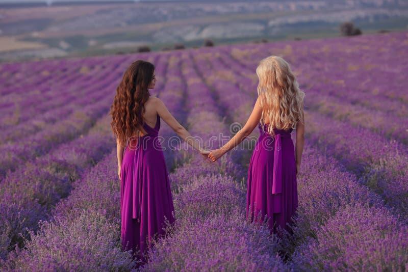 无忧无虑的两名妇女握享受在淡紫色领域的手日落 和谐 后面看法有吸引力白肤金发和深色与长 免版税图库摄影