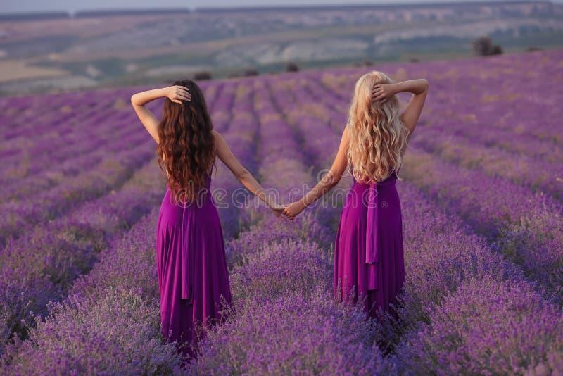 无忧无虑的两名妇女握享受在淡紫色领域的手日落 和谐 后面看法有吸引力白肤金发和深色与长 库存照片