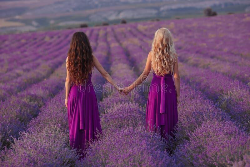无忧无虑的两名妇女握享受在淡紫色领域的手日落 和谐 后面看法有吸引力白肤金发和深色与长 库存图片