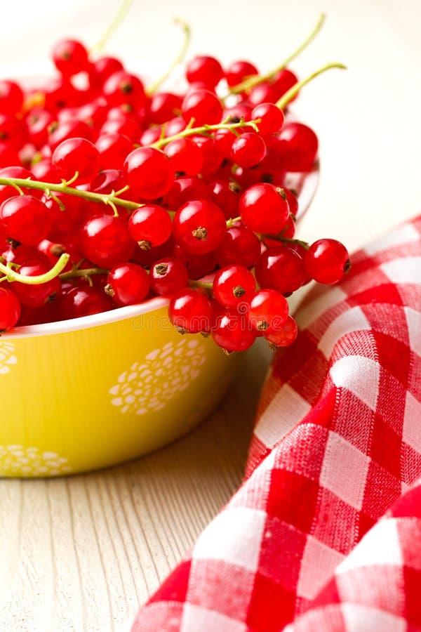 无核小葡萄干红色甜点 库存图片
