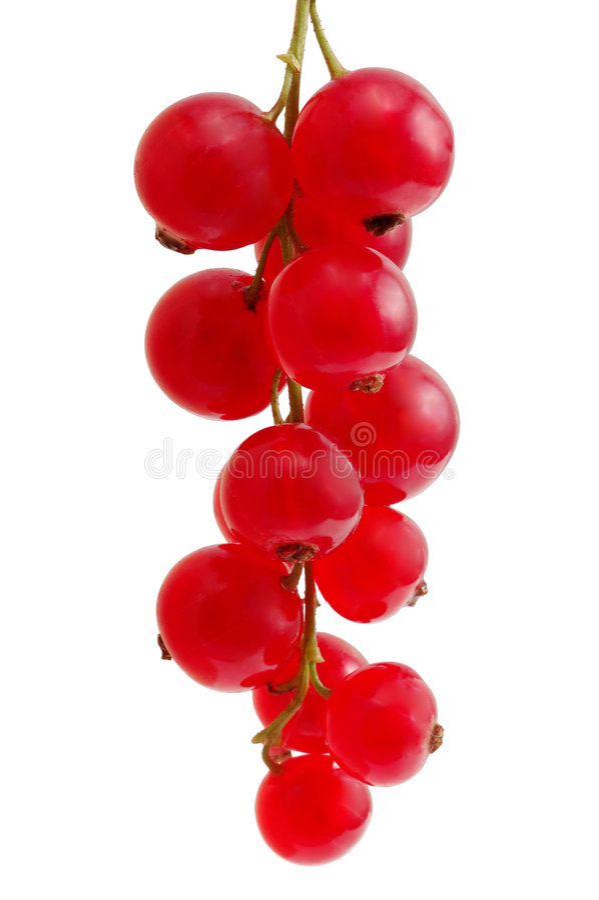 无核小葡萄干红色 免版税图库摄影
