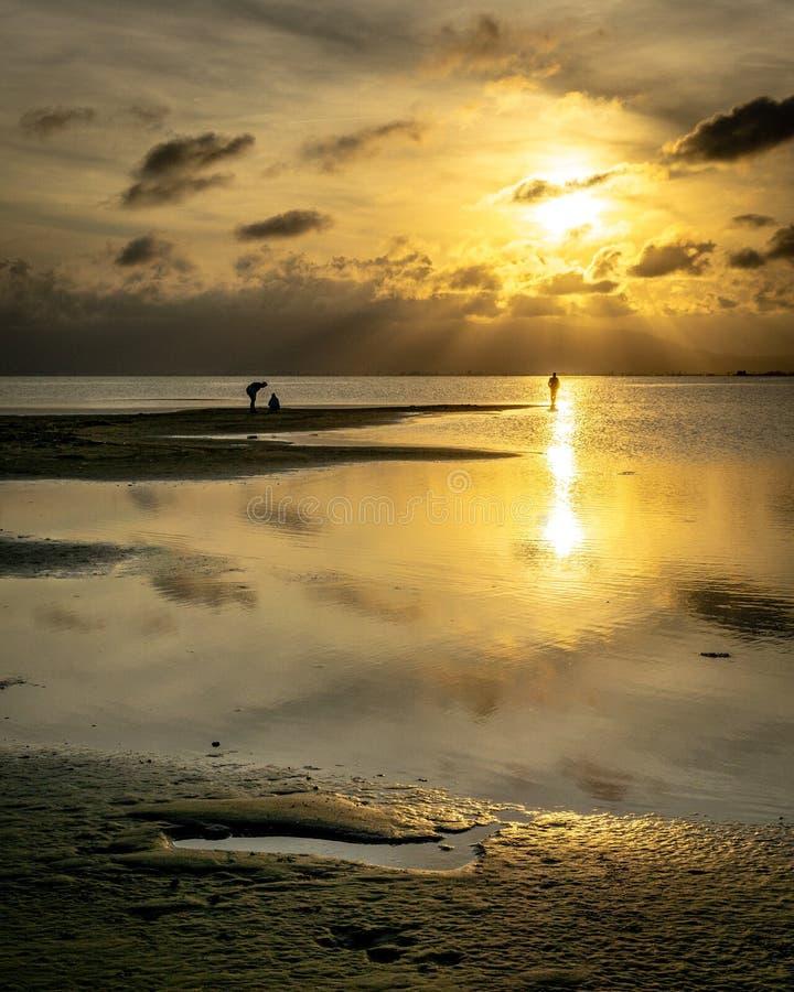 无法认出的人剪影海滩的在与风平浪静的日落 免版税库存照片