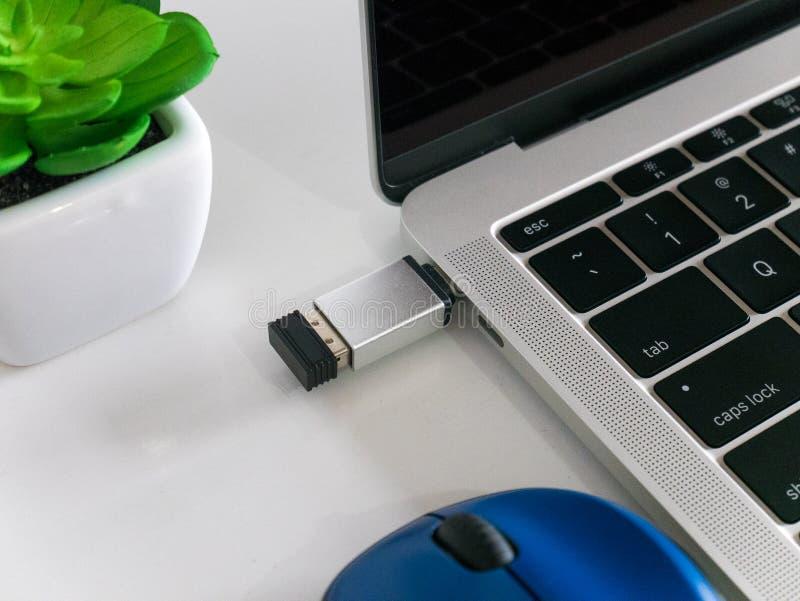 无线与USB类型C适配器交换器的老鼠纳诺接收器 免版税库存照片
