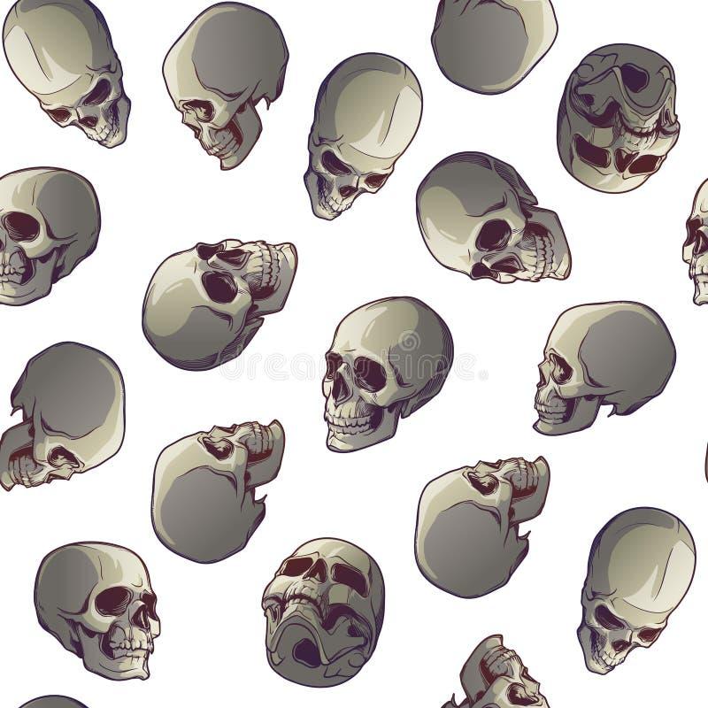 无缝万圣节的模式 人的头骨以各种各样的视角 背景查出的白色 混乱发行  皇族释放例证