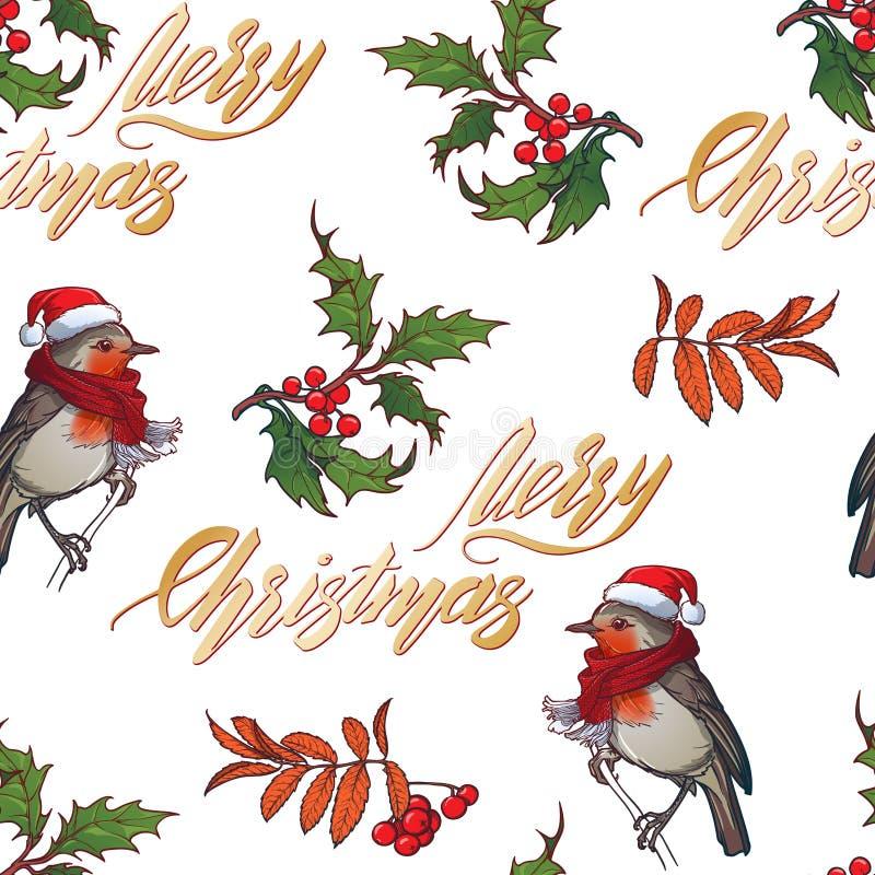无缝圣诞节的模式 在一红色圣诞节帽子和skarf的罗宾鸟 霍莉叶子和浆果 手写的标志 库存例证