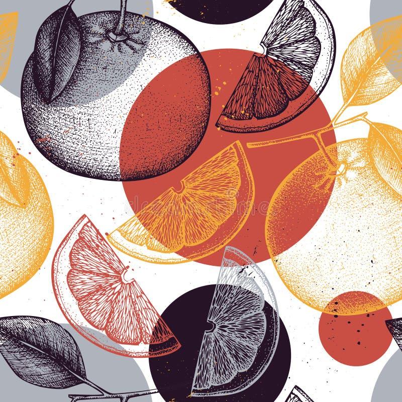 无缝柑橘的模式 柚背景 传染媒介葡萄柚例证 画为商标,象,标签的夏天果子,包装 向量例证