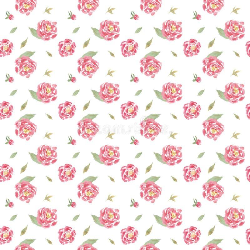 无缝的与桃红色牡丹的水彩花卉样式 向量例证