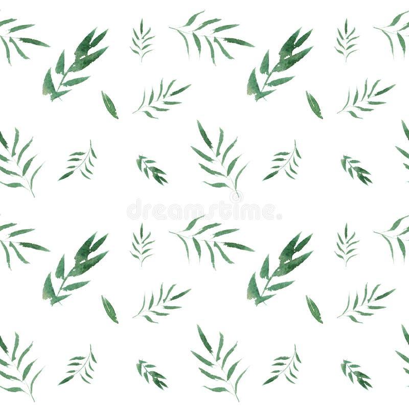 无缝的与绿色叶子的水彩花卉样式 库存例证