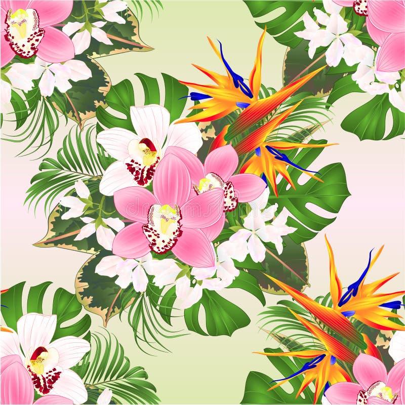 无缝的与美好的鹤望兰和白色和桃红色兰花兰花棕榈的纹理热带花植物布置, 皇族释放例证