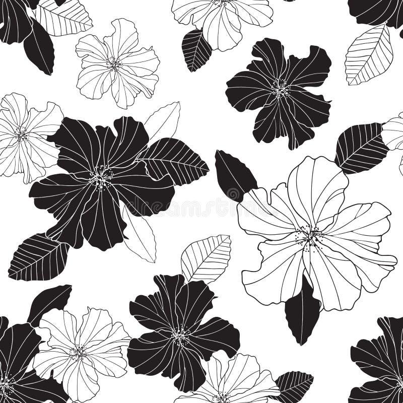 无缝的传染媒介重复黑白木槿花和叶子 皇族释放例证
