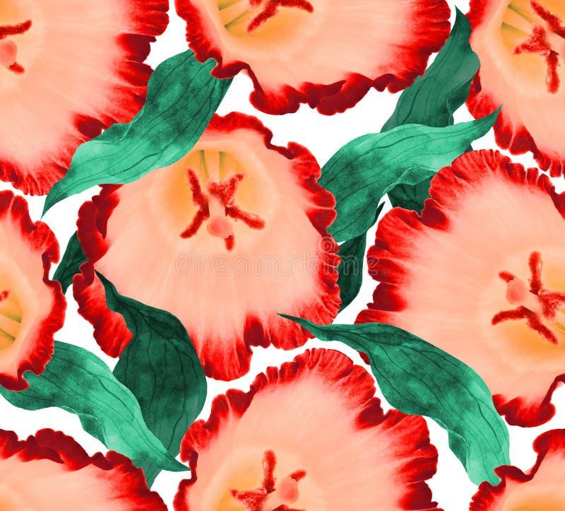 无缝的开花花背景 例证花卉样式 库存照片