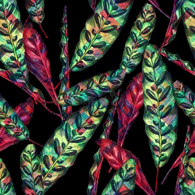 无缝的手工制造热带花卉样式 库存例证