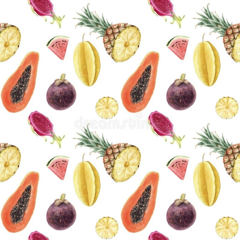 无缝的手拉的美丽的水彩热带样式用水多的果子 库存图片