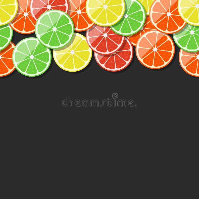 无缝的果子框架 柑橘,柠檬,石灰,桔子,蜜桔,葡萄柚 也corel凹道例证向量 皇族释放例证