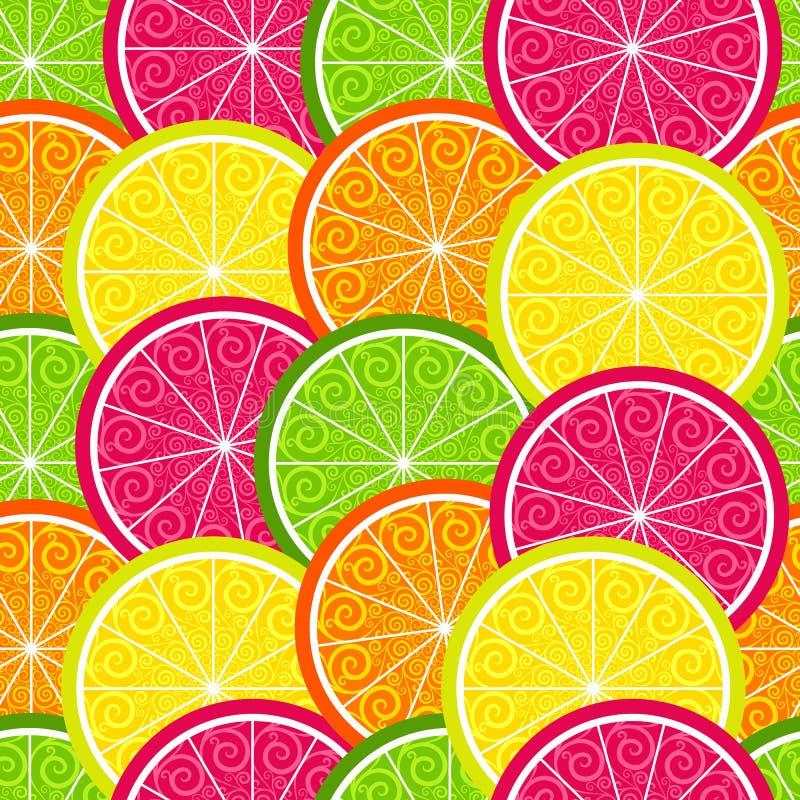 无缝的柑橘五颜六色的样式 皇族释放例证