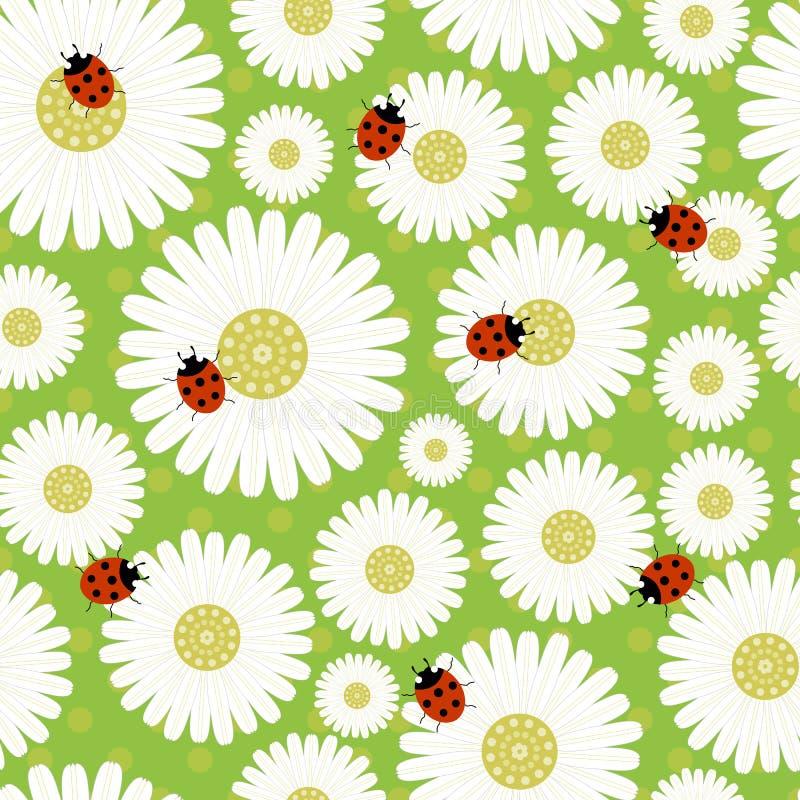 无缝的样式春黄菊 向量例证