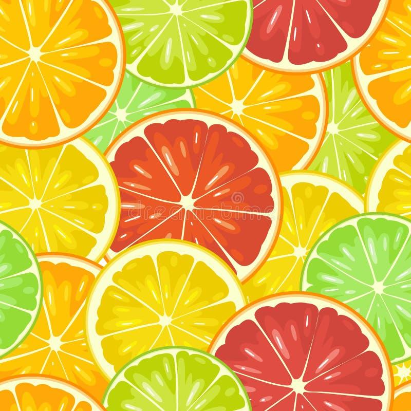 无缝的样式柑橘水果 切柠檬,石灰,葡萄柚,橙色 向量例证