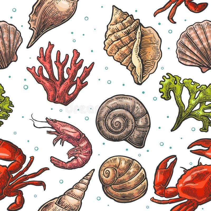 无缝的样式海壳、珊瑚、螃蟹和虾 传染媒介板刻葡萄酒例证 在空白背景 向量例证