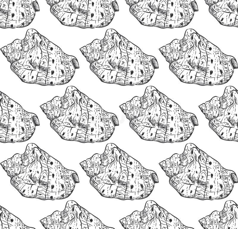 无缝的样式海壳Cypraecassis是类中型对大蜗牛,在家庭的海洋腹足动物的软体动物 皇族释放例证