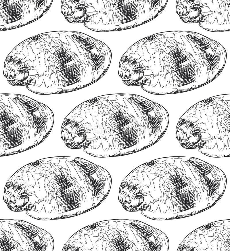 无缝的样式海壳Volutidae,共同的名字爱奥尼亚柱型,是掠食性蜗牛一个分类学家庭  剪影黑色等高 库存例证