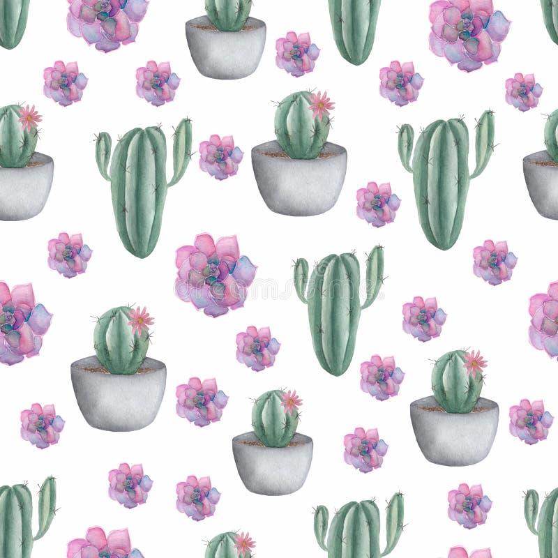 无缝的样式用在罐和紫色多汁植物的仙人掌 在时髦逗人喜爱的动画片样式的手拉的例证 皇族释放例证